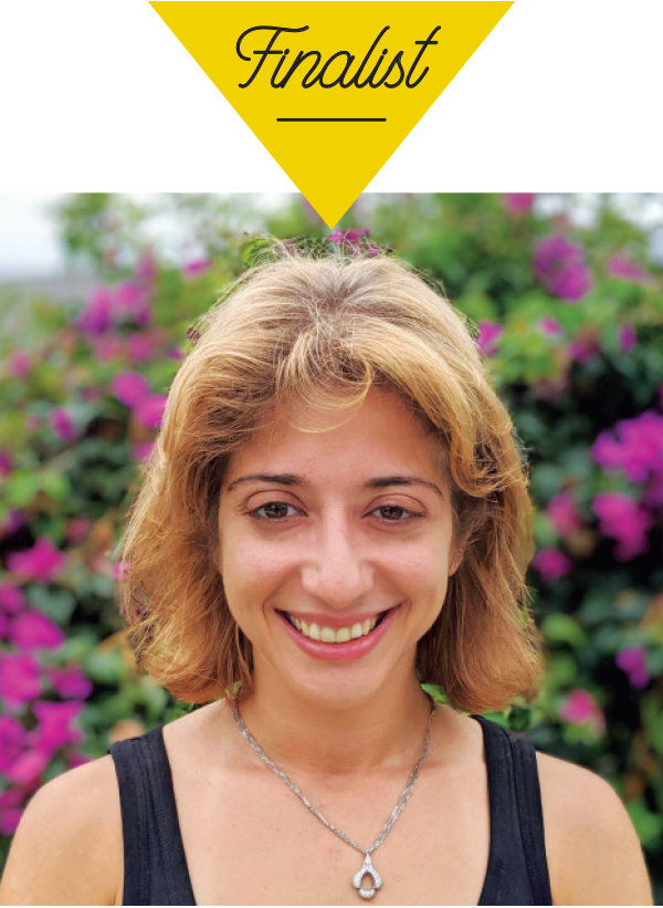Suzan Shahrestani, Minnowtech