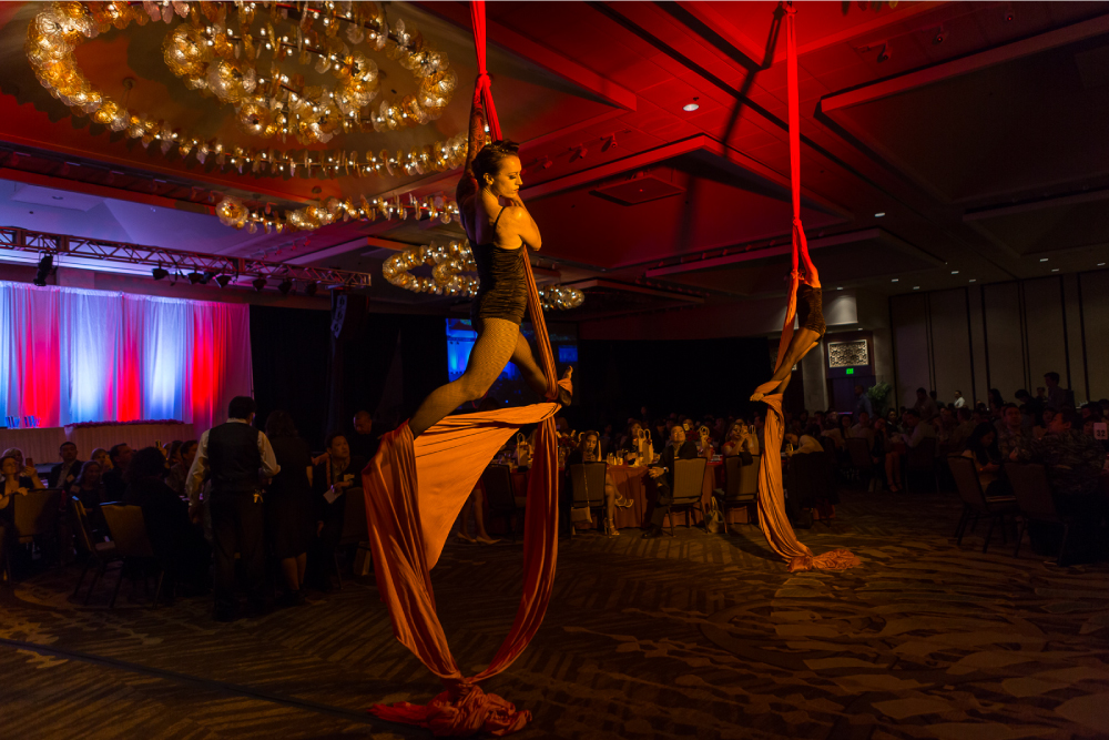 Entertainment by the Volary Vixens aerial troupe kicked off the evening. Photo by Aaron K. Yoshino.