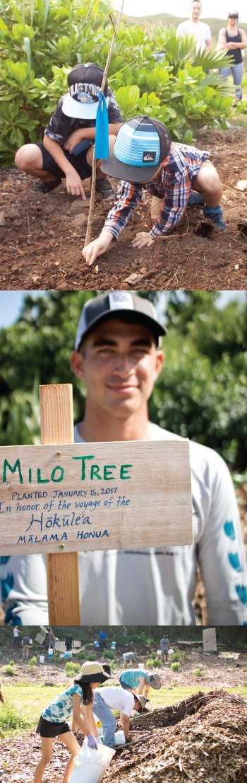 During the busy workday, the team planted a milo tree in honor of Hokulea. The voyaging canoe is represented in the 20 for the Next 20 by Austin Kino (middle picture), and apprentice navigator on two segments of its worldwide voyage. Photos by Jeff Hawe.