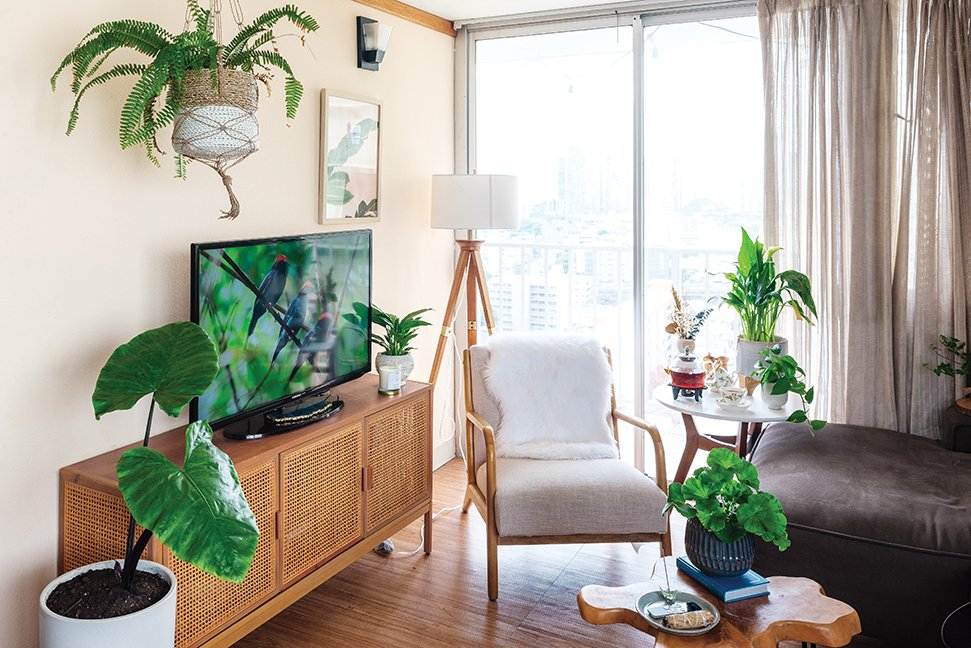 condo with various houseplants