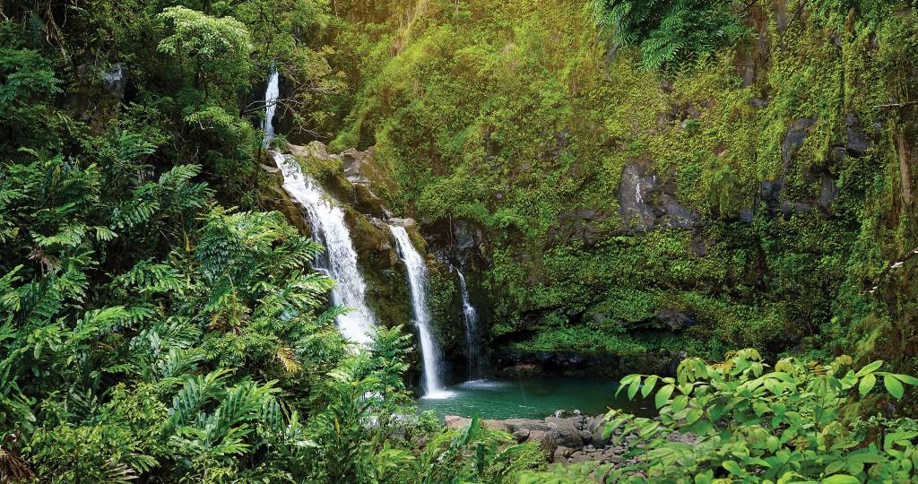 04-20-HHR-Green-Hawaii_1-Environment_Featured
