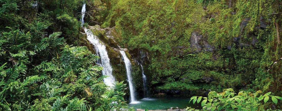 04 20 Hhr Green Hawaii 1 Environment Featured
