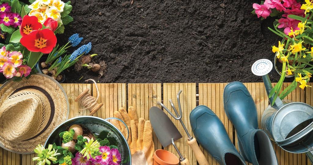 HHR-09-18-Featured-Image-Soil
