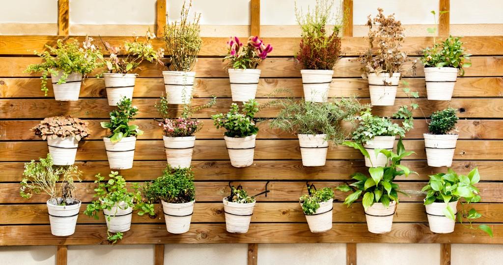 HHR-12-18-Featured-Image-Garden Products