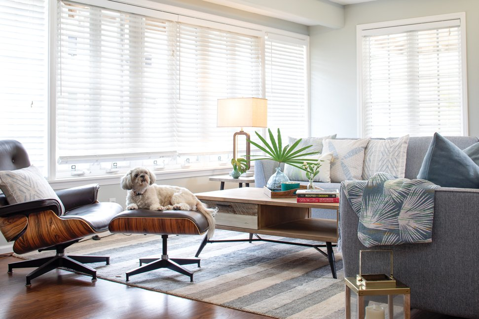 Tips for Furnishing Your Living Room