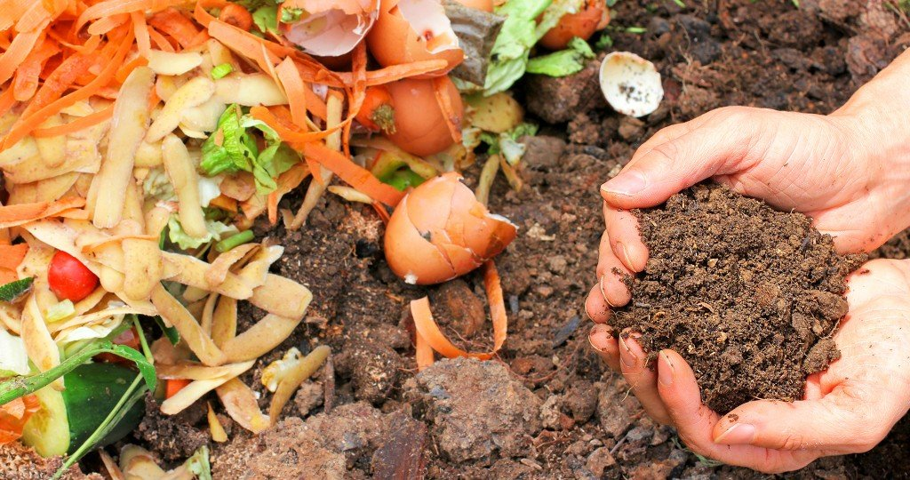 composting-GettyImages-479440915