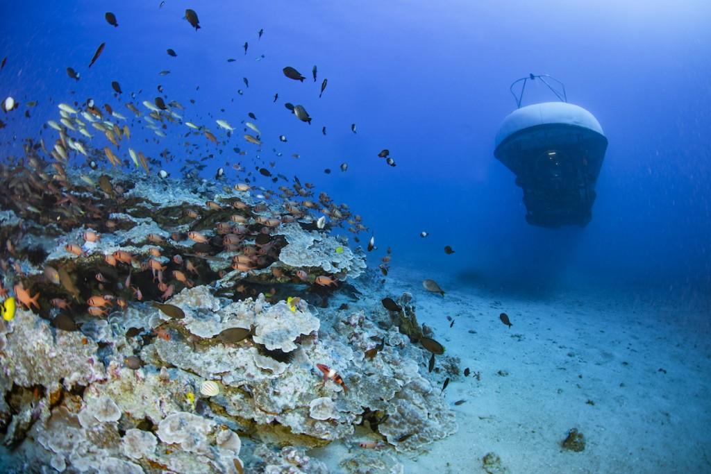 0309020 Atlantis Adventure Pic 3