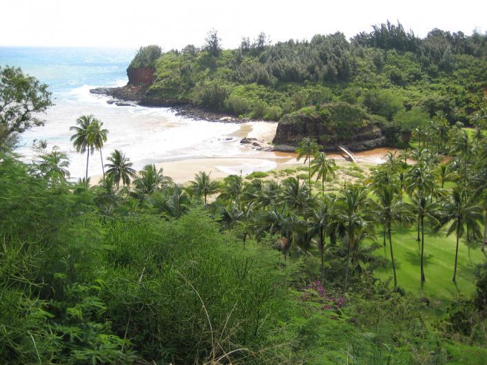 national tropical botanial garden kauai