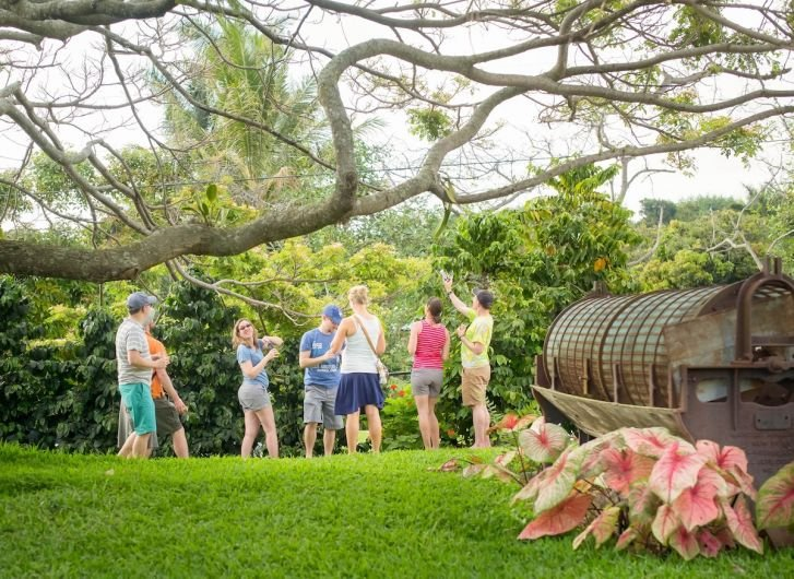 Best Farm Tours Hawai'i Island