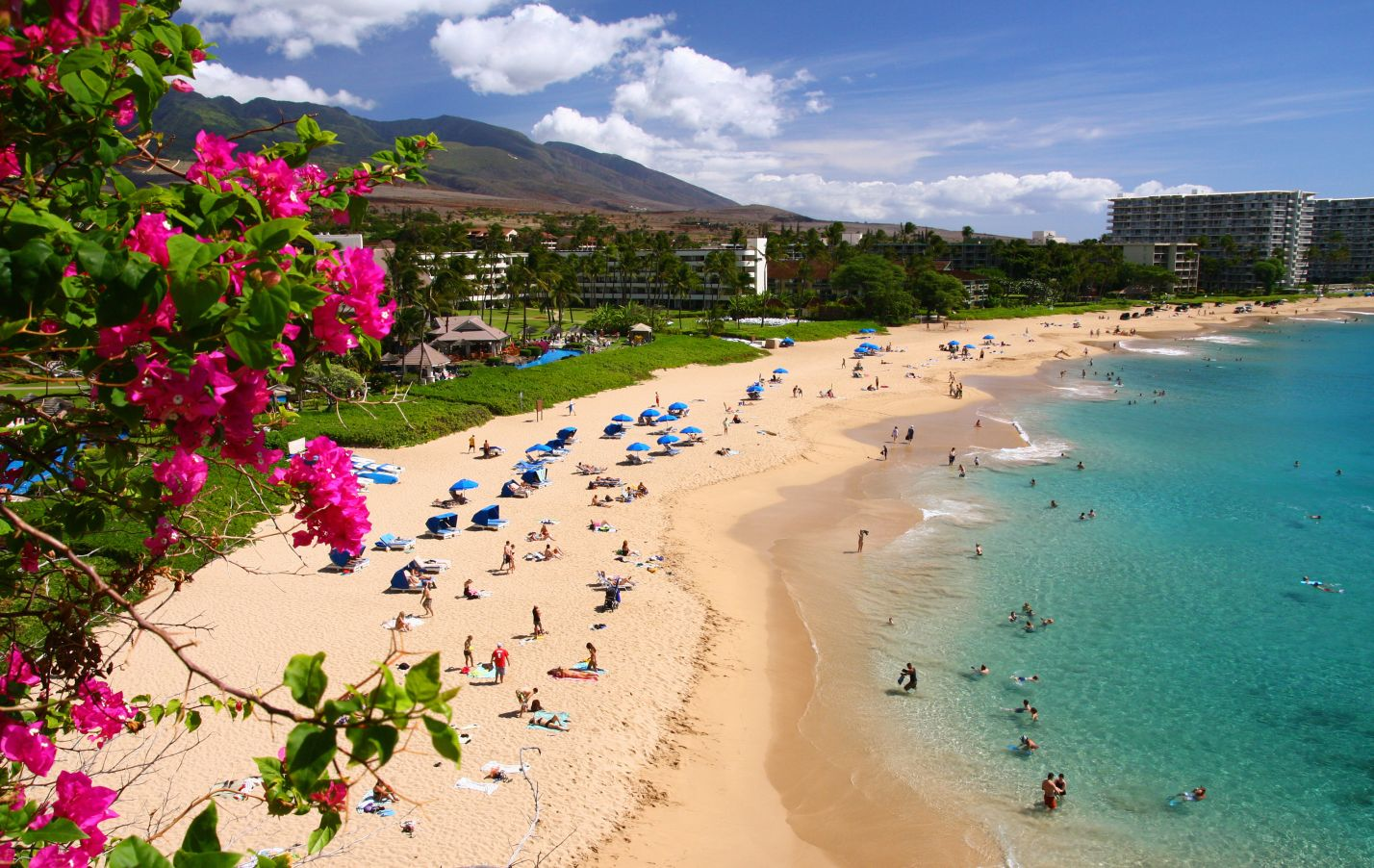 Image result for Maui, Hawaii