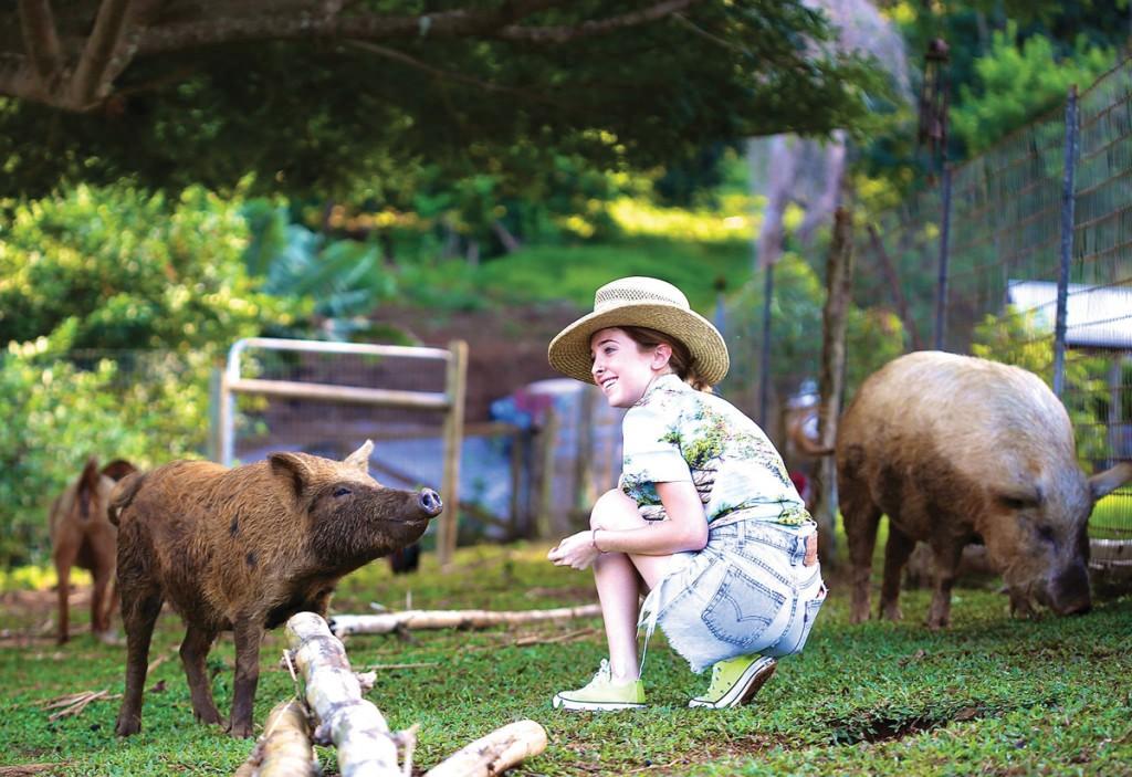 Haiku_Courtesy-Farm