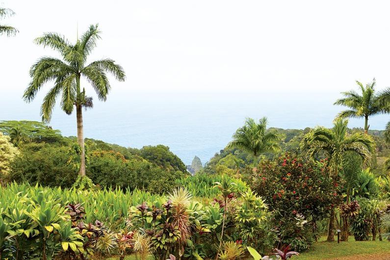 road to hana botanical gardens