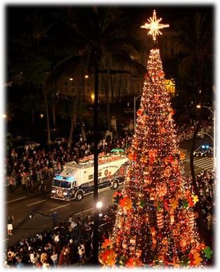 HonoluluCityLightsTree