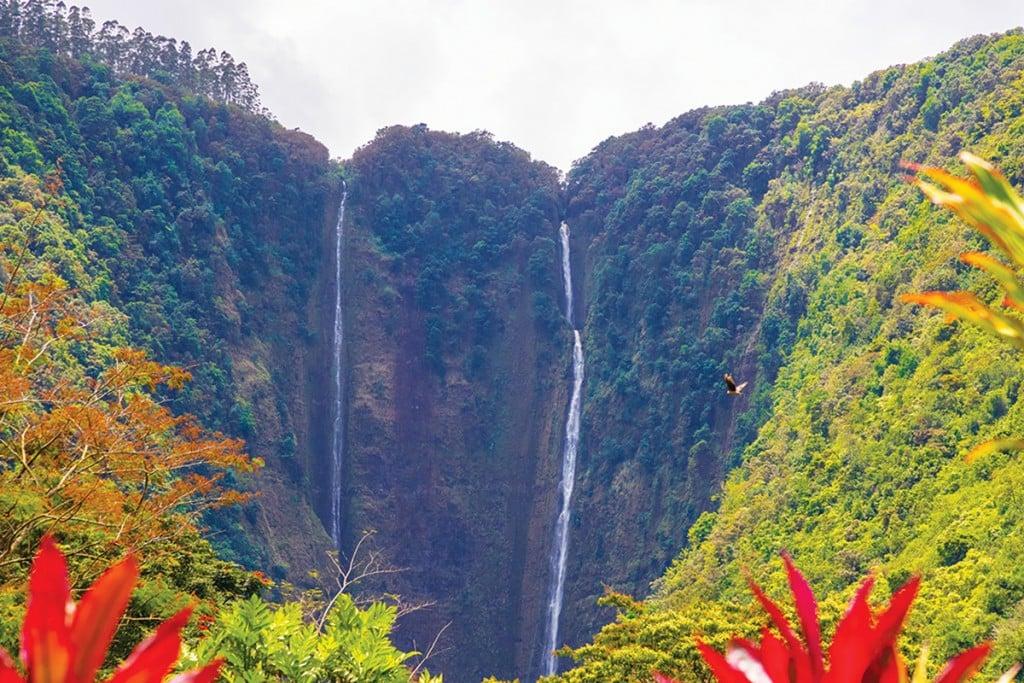 IH-Hawaii_6-hed