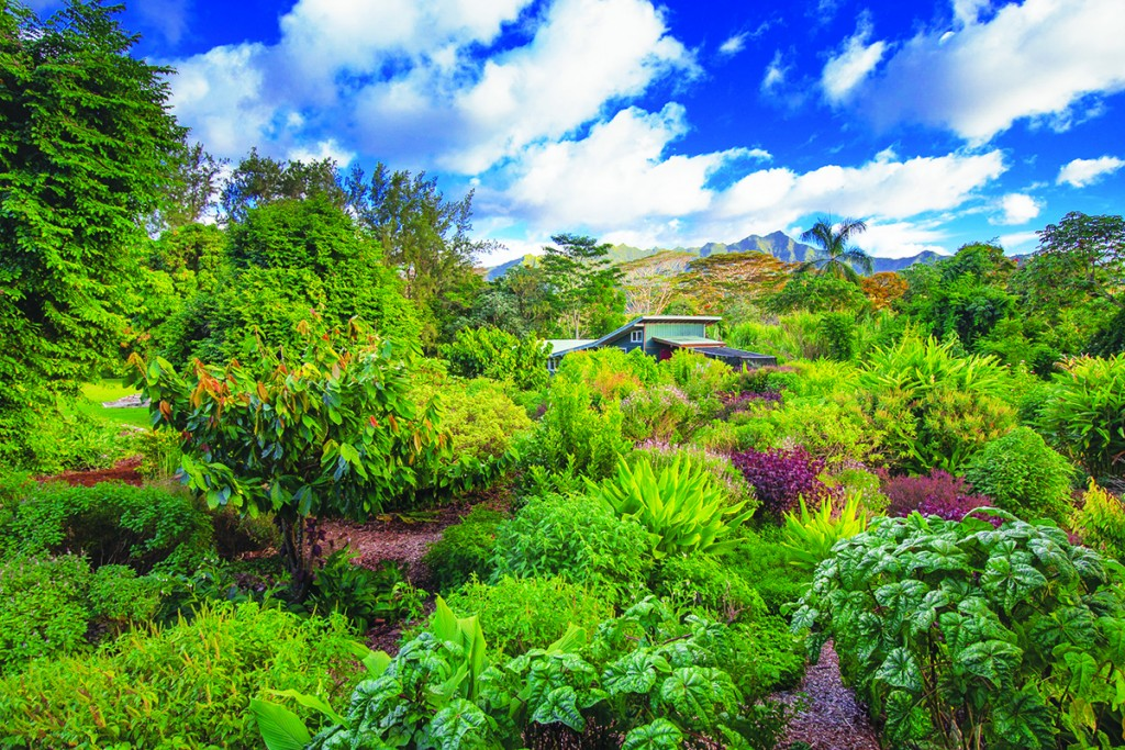 IH Kauai Farmacy 1