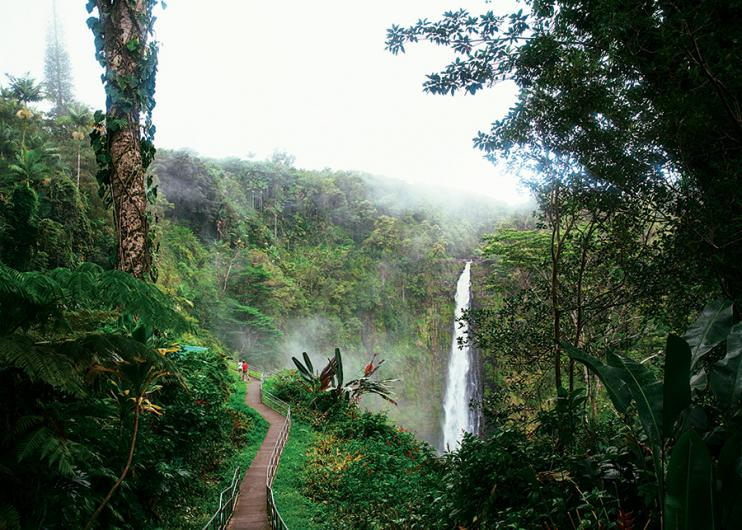 akaka-falls-big-island-hawaii