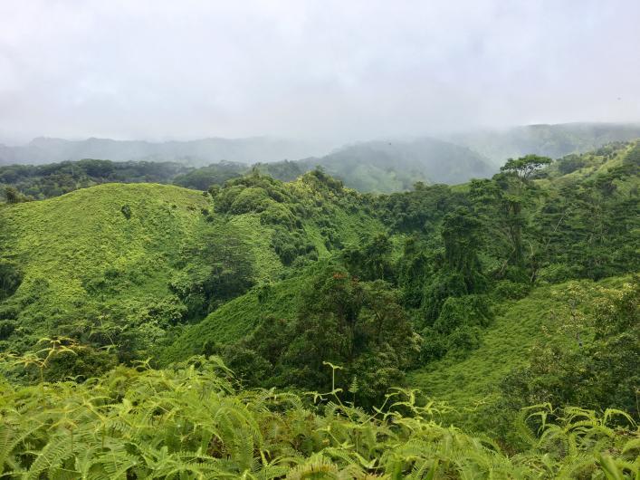 kuilau trail