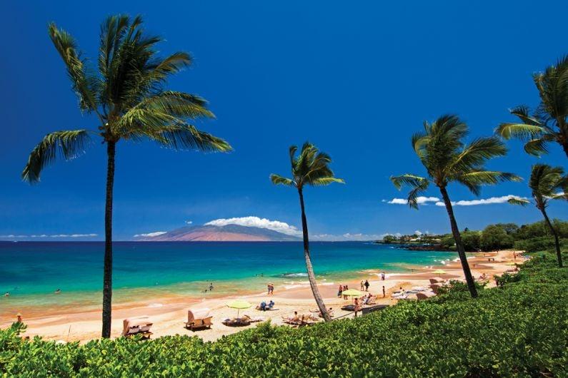 Maui_MauiOpener