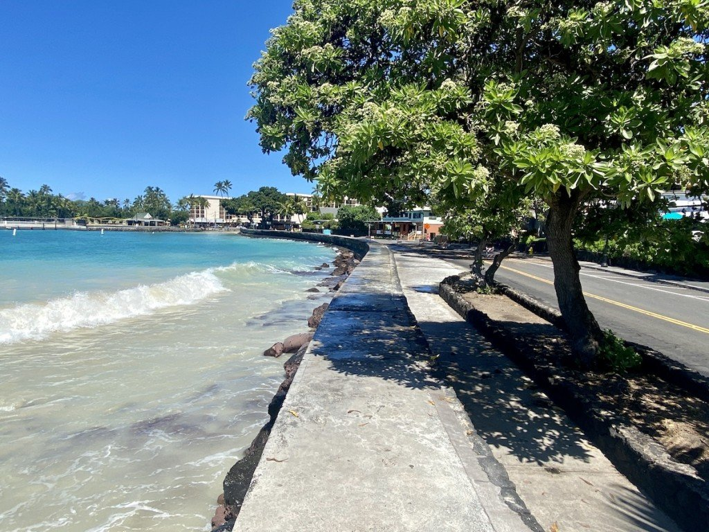 Quiet but Scenic Stroll Down Alii Drive_Photo Laura Dornbush
