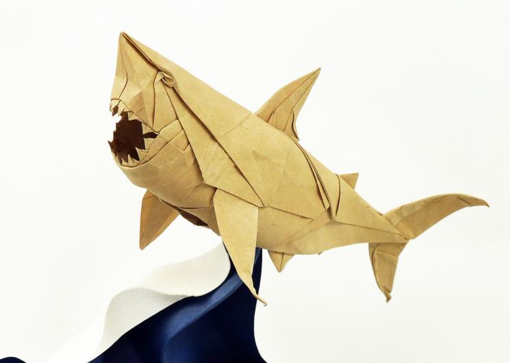 SharkOnWave