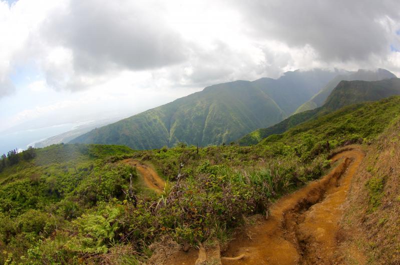 waihee ridge trail maui