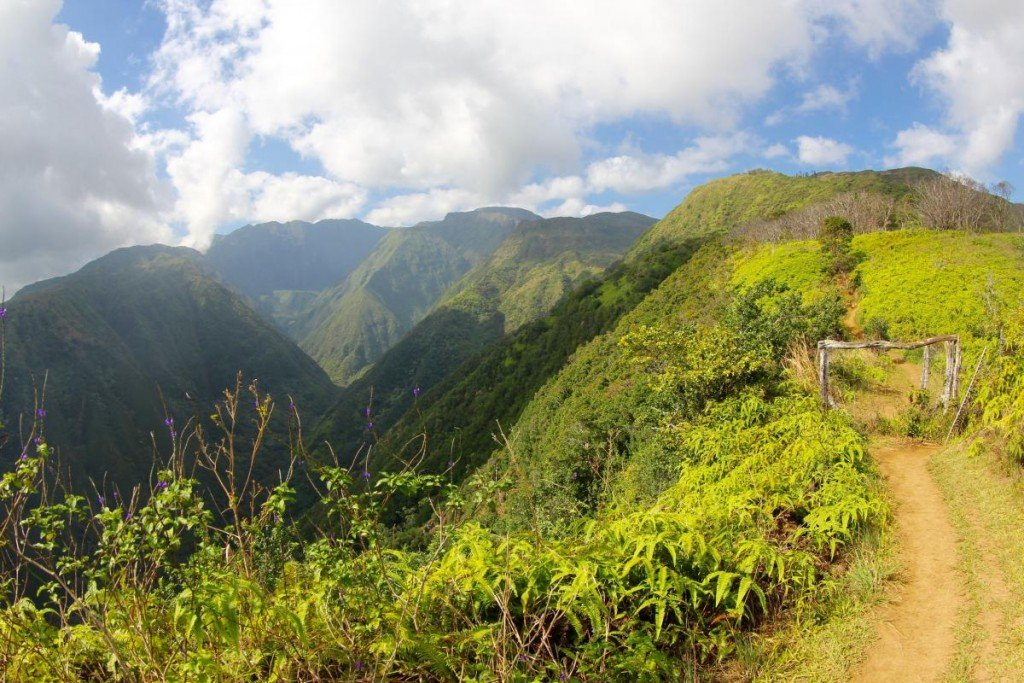Waihee Ridge 7