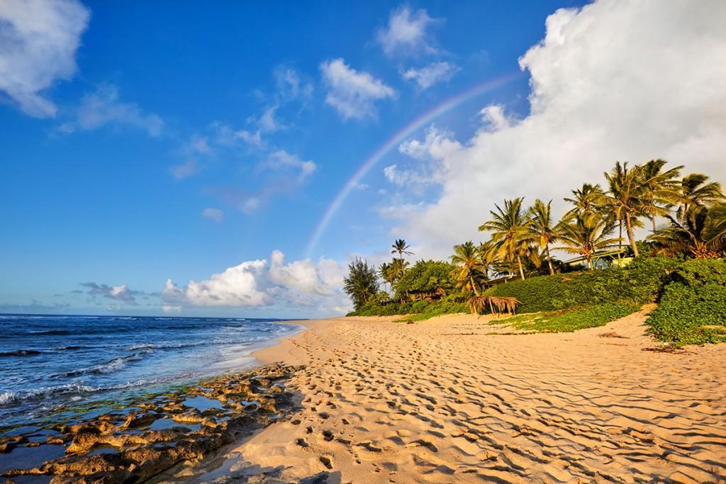 intern hawaii jobs