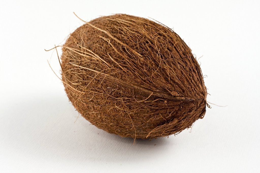 coconut_Horia Varlan_flickr