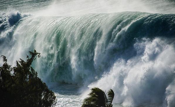 haleiwa swell hawaii 2016