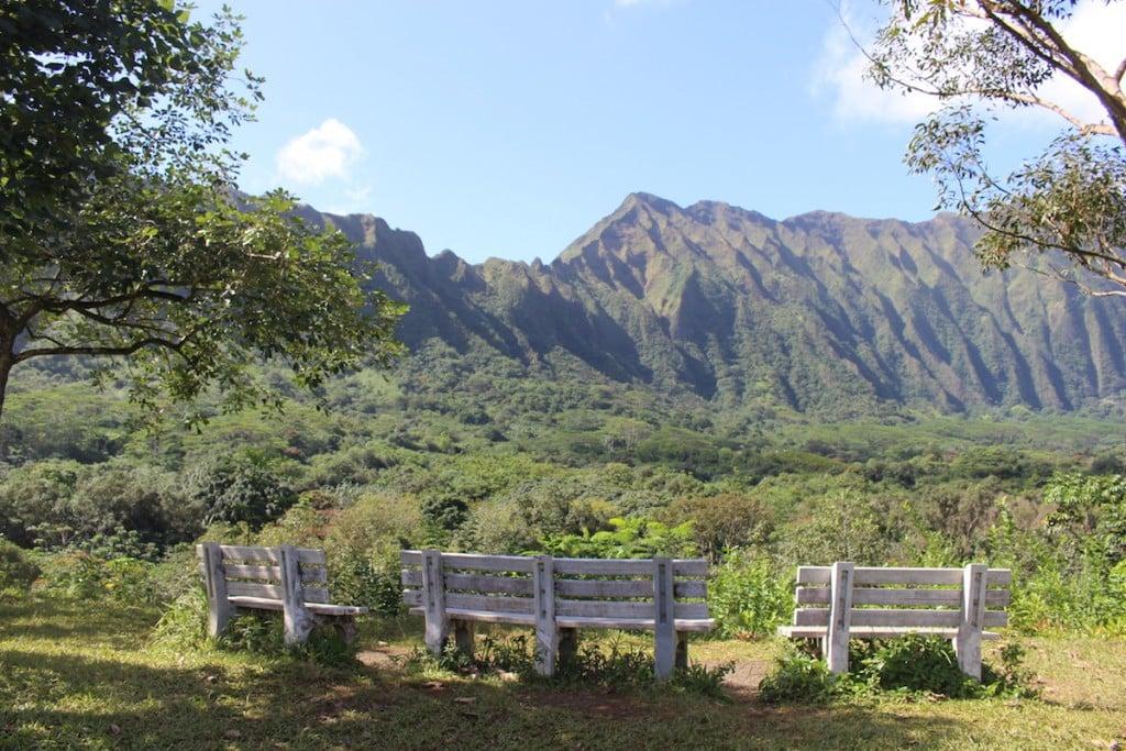 hoomaluhia-benches
