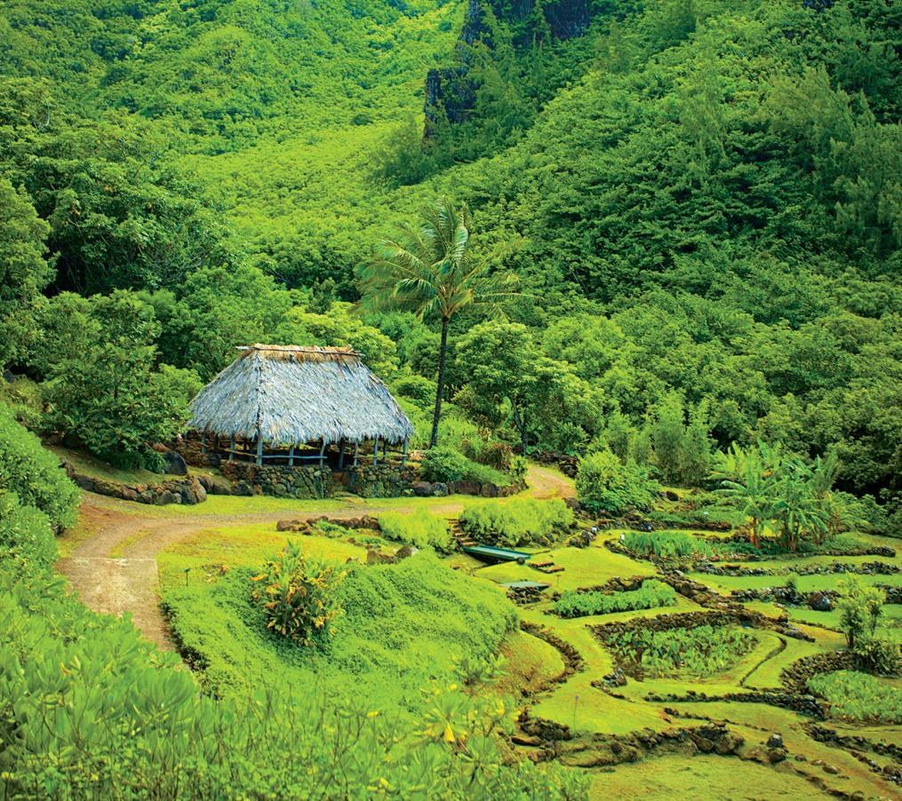limahuli garden preserve kauai