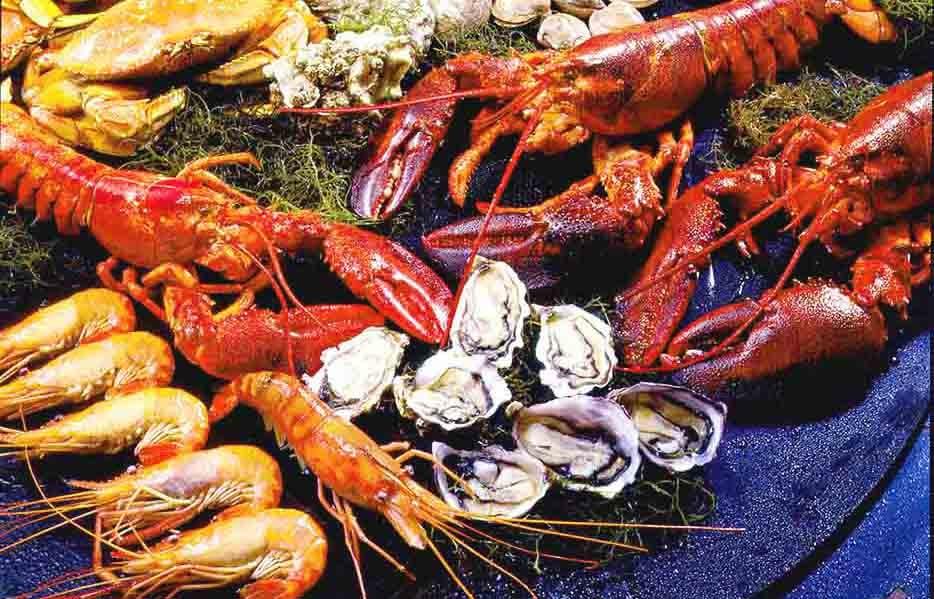 seafood village fish