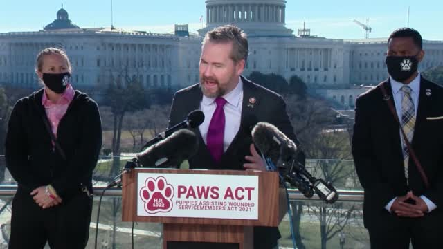 Congressmen Ask For The Va To Provide Service Dogs