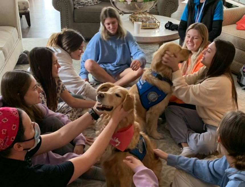 Cubby And Devorah Comfort Dogs With Friends At Chi Omega Boulder