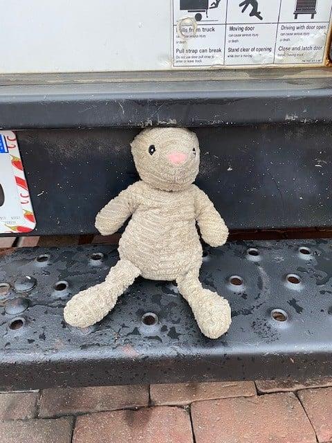 Stuffed Animal Found