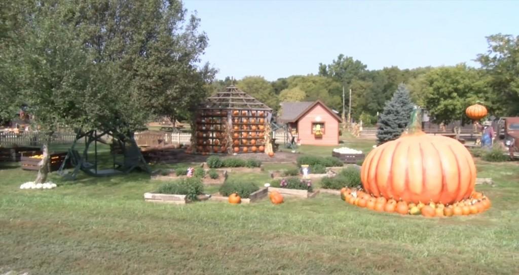 Rocca Berry Farm