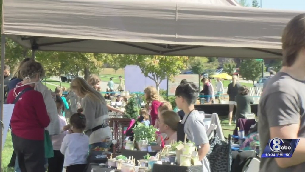 Lincoln Youngsters Showcase Business Acumen At Lnk Kidpreneur Fair