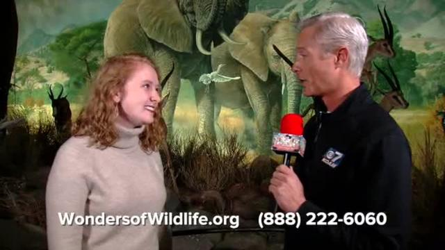 Wonders of Wildlife 2019