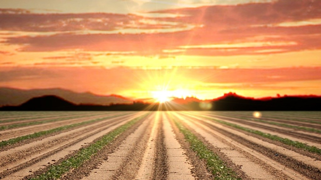 Drought Response: Missouri Opens Hay, Water Programs for Farmers