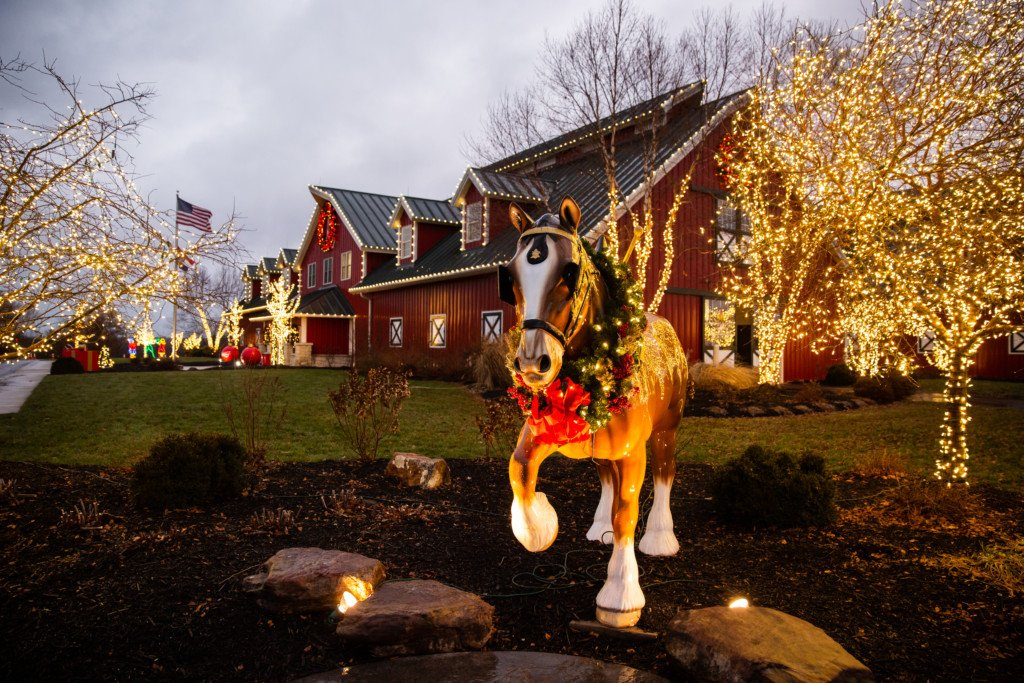 Warm Springs Ranch Holiday Lights Fest