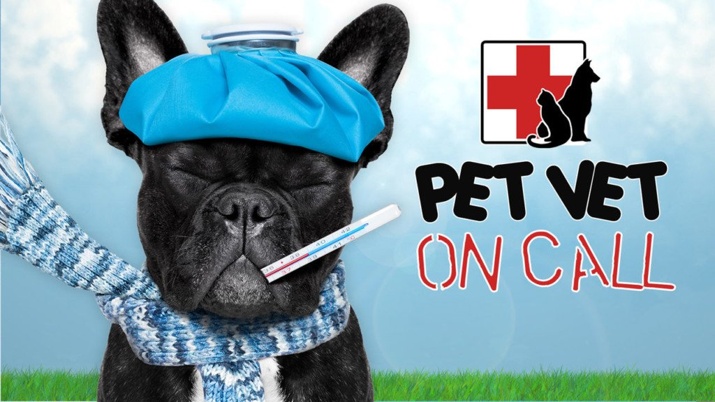 Pet vet on call logo with dog