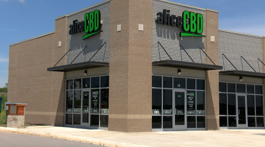 A woman holds clinics at her CBD shop to help people obtain medical marijuana cards