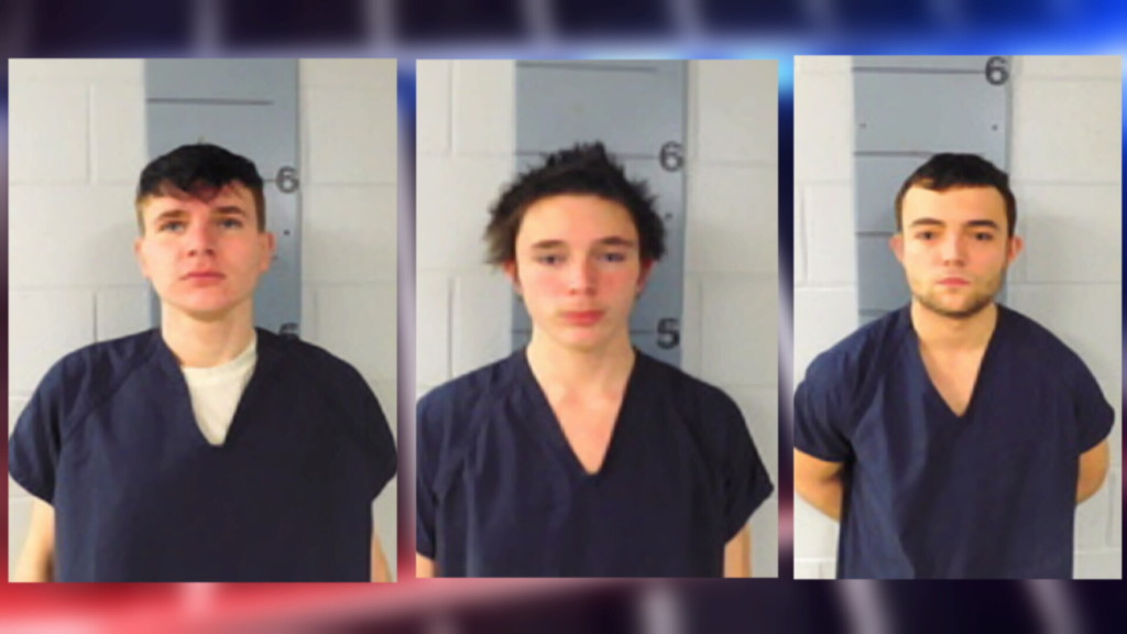 4 juveniles, 3 adults charged in Monett tire slashing incidents