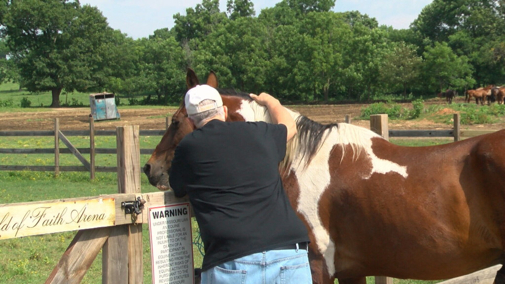 Horse therapy ranch looks to expand services for veterans