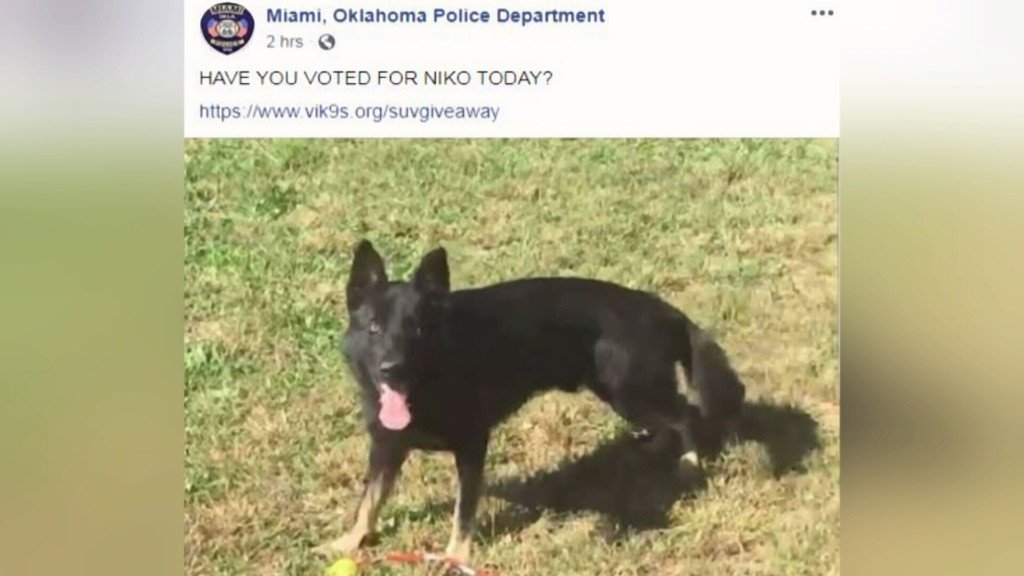 Miami Police Department asks community to vote in a K9 SUV giveaway