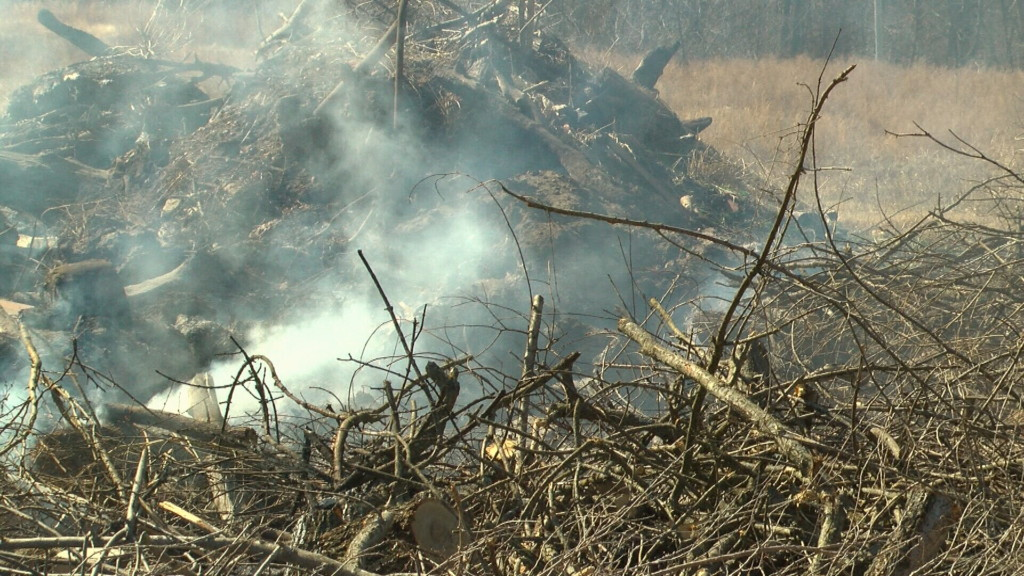 Neosho authorities investigate arson on park and city property