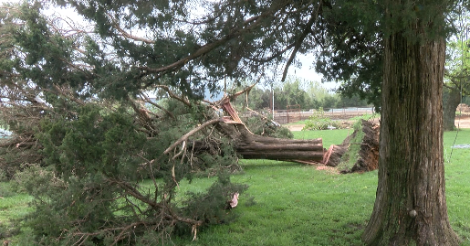 Storm leaves extensive damage to farm in Lamar