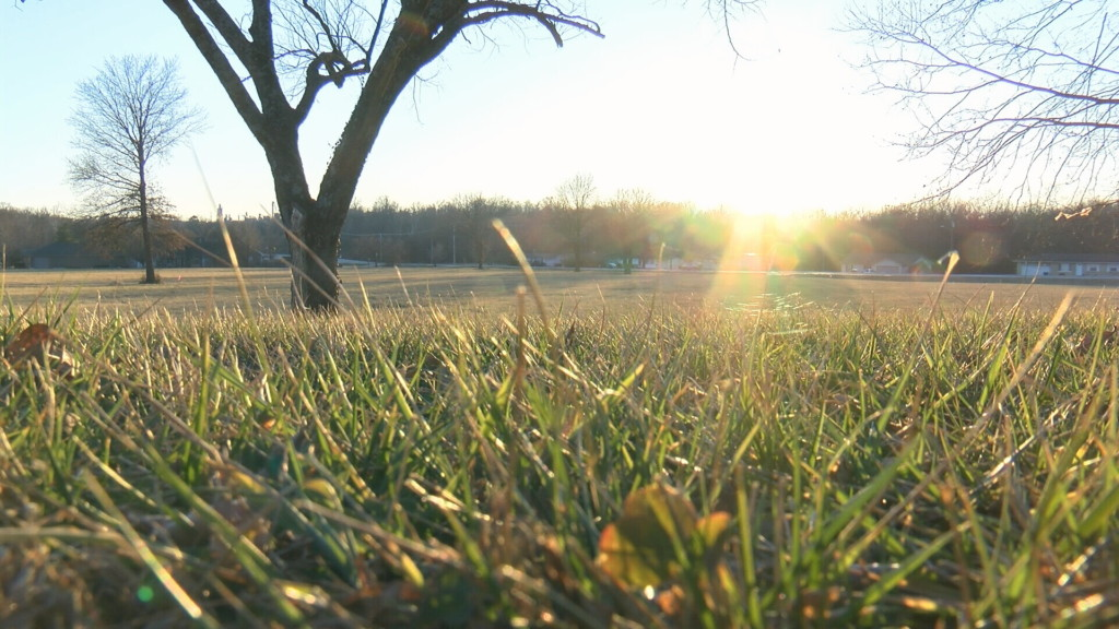 A possible site for a 'tiny village' in Joplin