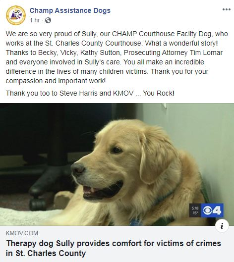 Facebook post of Sully