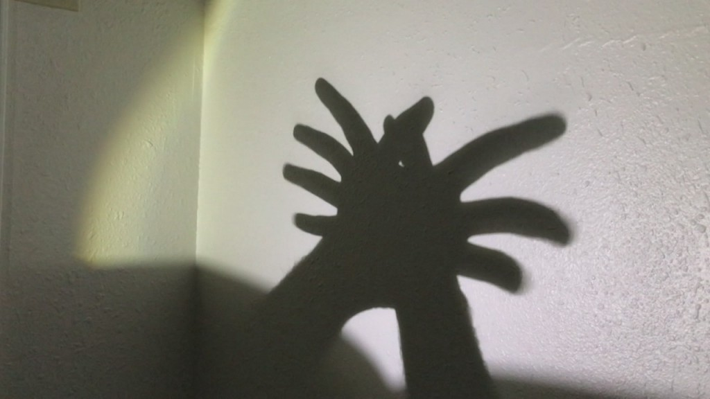 Boredom Buster: Shadow Puppets